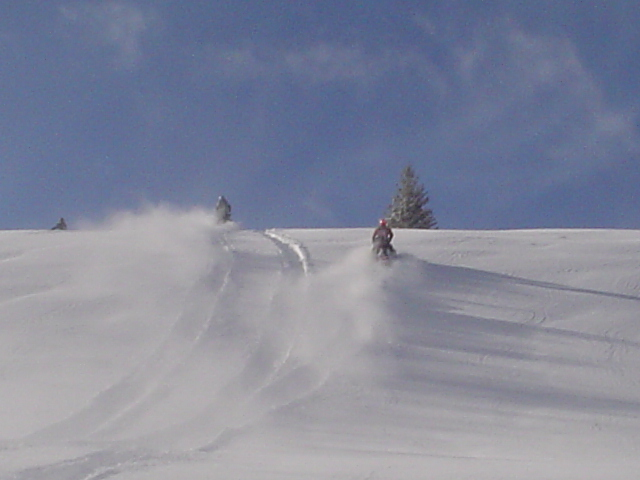 Good snow in the Bighorns-dsc03030.jpg