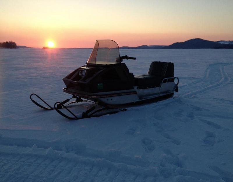 72 Arctic Cat Panther Eccentric Bearings Snowmobile
